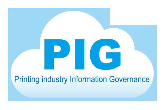 ソリューション(PIG)